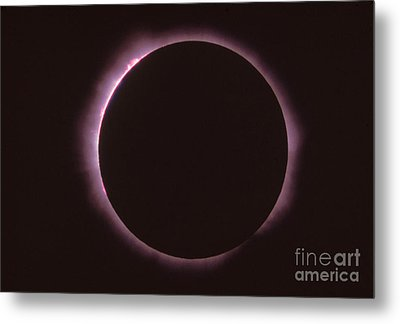 Solar Prominence And Chromosphere Metal Print by Science Source