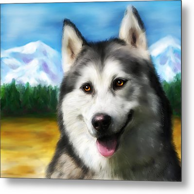 Smiling Siberian Husky  Painting Metal Print by Michelle Wrighton