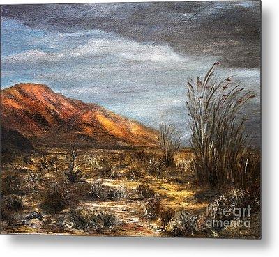 Sonora Desert Metal Print by Danuta Bennett