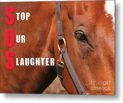 Metal Print featuring the photograph Sos Stop Our Slaughter by Megan Dirsa-DuBois
