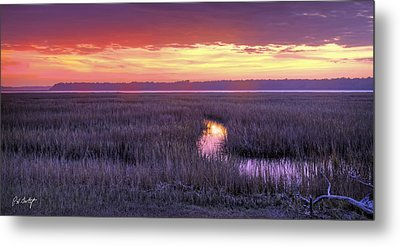 South Carolina Tidal Marshes Metal Print by Phill Doherty