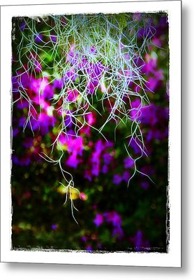 Metal Print featuring the photograph Spanish Moss And Azaleas by Judi Bagwell