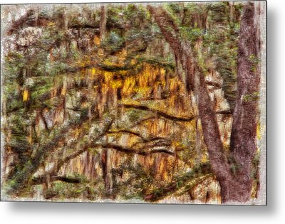 Spanish Moss And Sunset Metal Print by Tom Culver