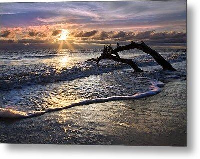 Sparkly Water At Driftwood Beach Metal Print by Debra and Dave Vanderlaan