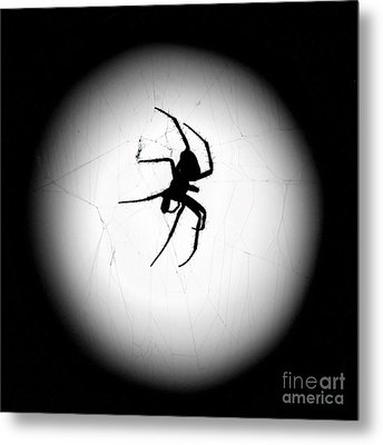 Spider In The Moon Metal Print by Val Armstrong