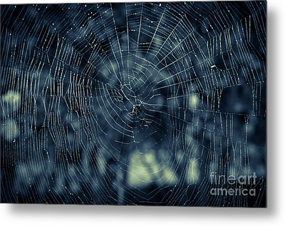 Metal Print featuring the photograph Spider Web by Matt Malloy