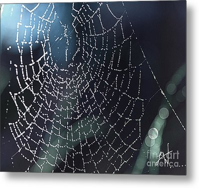 Metal Print featuring the photograph Spiderweb Blues by Artist and Photographer Laura Wrede