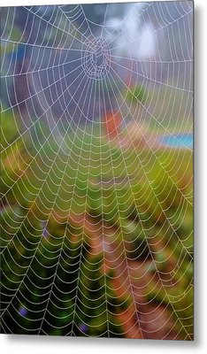 Spiderweb With Dew Drops Metal Print