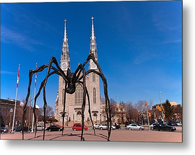 Metal Print featuring the photograph Spidy by Josef Pittner