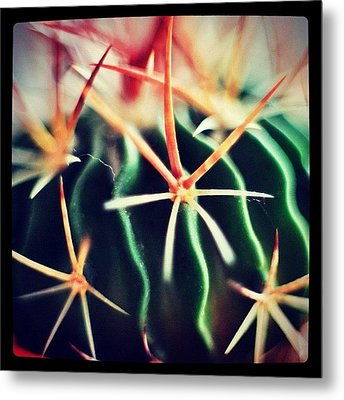 #spikes #green #plant #igaddict Metal Print