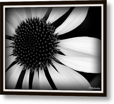 Spin Metal Print by Priscilla Richardson