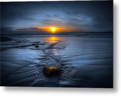 Spine Wave Metal Print by Svetlana Sewell