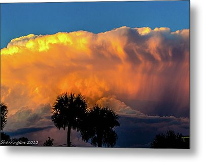 Spirit In The Clouds Metal Print by Shannon Harrington