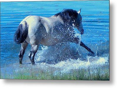 Splashing Horse Metal Print by FeVa  Fotos