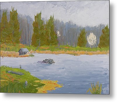 Spring Blossoms Beaver Pond Metal Print by Robert P Hedden