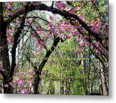 Spring Blossoms With Scripture Metal Print by Cindy Wright