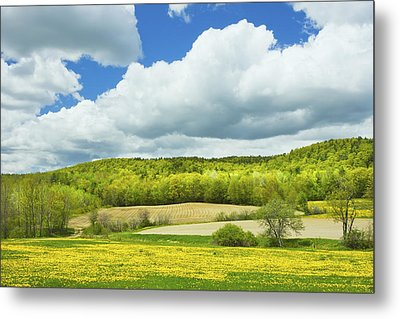 Spring Farm Landscape And Blue Sky In Maine Metal Print by Keith Webber Jr