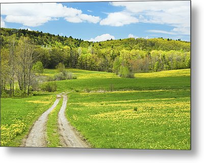 Spring Farm Landscape With Dirt Road In Maine Metal Print