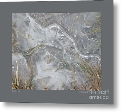 Spring Ice-i Metal Print by Patricia Overmoyer