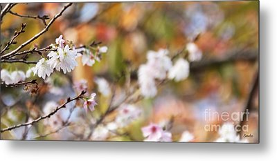 Spring In Autumn Metal Print by Eena Bo