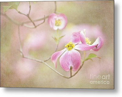 Metal Print featuring the photograph Spring Inspiration by Cheryl Davis