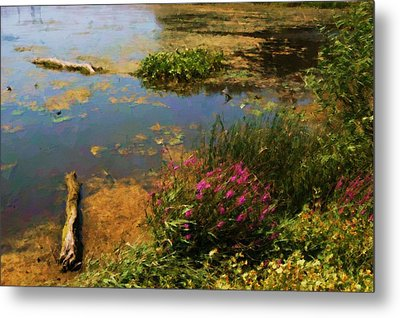 Spring Lake Millpointe Park Metal Print by Ritter Photography And Fine Art Images