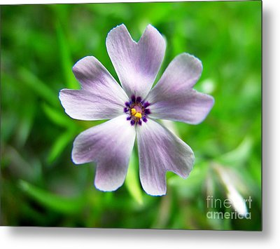 Spring Purple Metal Print