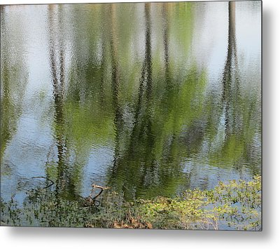 Spring Reflections Metal Print by Valia Bradshaw