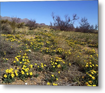 Spring Surprise Franklin Mountains Metal Print by Kurt Van Wagner