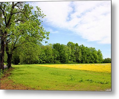 Springtime In Franklin Metal Print