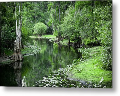 Springtime On The Lake Metal Print by Carolyn Marshall