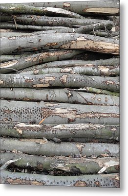 Stack Metal Print by Michael Standen Smith