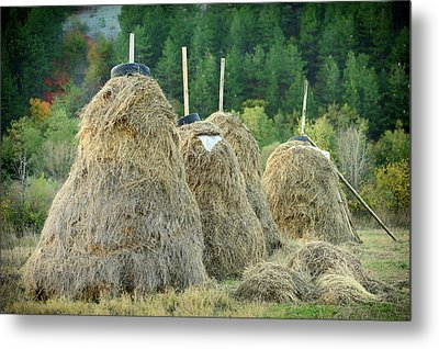 Stacked Hay Metal Print by Gunay Mutlu