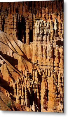 Metal Print featuring the photograph Stand Tall by Vicki Pelham