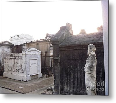 Metal Print featuring the photograph Standing Guard by Alys Caviness-Gober