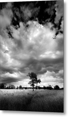 Metal Print featuring the painting Standing Out Alone by John Chivers