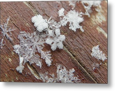 Star Shaped Snow Flakes Metal Print by Chad and Stacey Hall