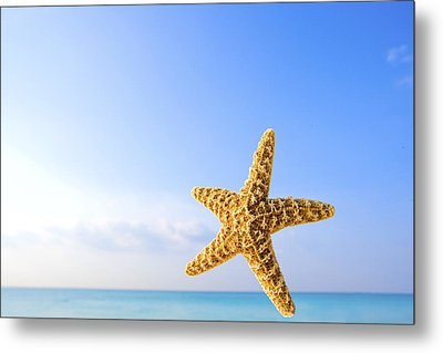 Starfish In Front Of The Ocean Metal Print by Richard Wear
