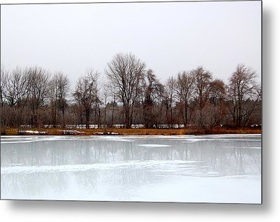 Metal Print featuring the photograph Stark Beauty by Mary McAvoy
