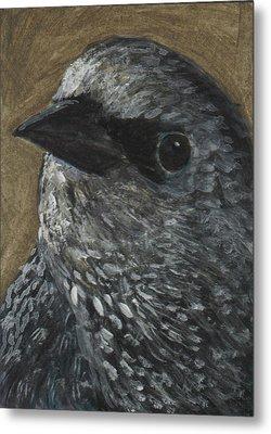 Starling Study Metal Print by Robin Gorton