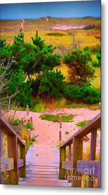 Metal Print featuring the photograph Steps - Surfside Beach by Jack Torcello