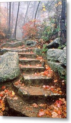 Steps Cloudland Canyon Metal Print
