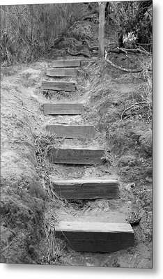 Metal Print featuring the photograph Steps  by Elizabeth  Doran