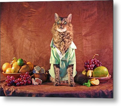 Metal Print featuring the photograph Still Life With Cat by Joann Biondi