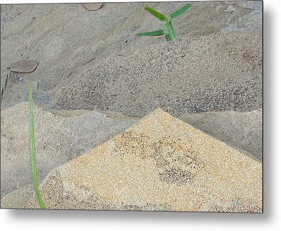 Metal Print featuring the photograph Stone And Grass by Louis Nugent