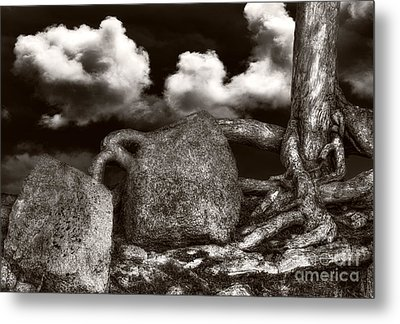 Stones And Roots Metal Print by Ari Salmela