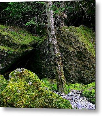 Stonescape I Metal Print by Michael Wyatt