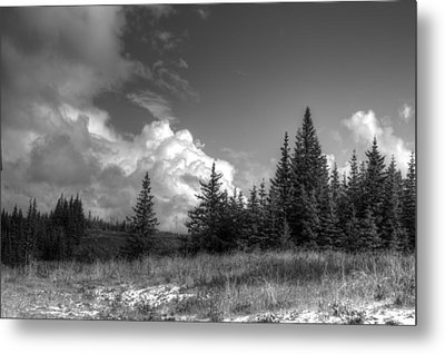Metal Print featuring the photograph Storm Clouds Building by Michele Cornelius