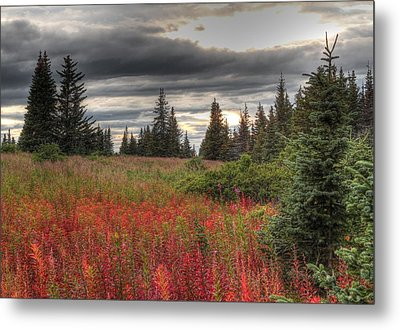 Metal Print featuring the photograph Storm Clouds In Fall by Michele Cornelius
