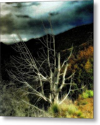 Storm Over The Jemez Mountains Metal Print by Ellen Heaverlo